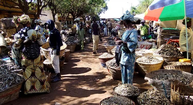 The price of Catfish has nearly doubled at local markets due to the security situation
