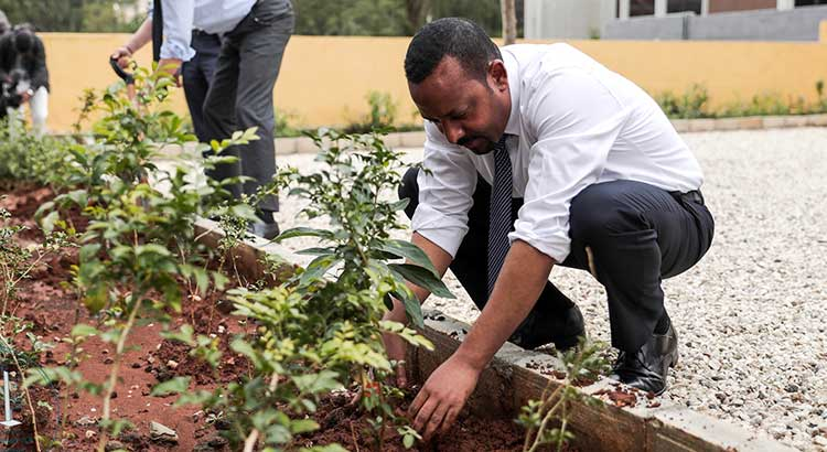 "Abiy Ahmed has laid the ground work for lasting peace with the ""Medemer"" concept"