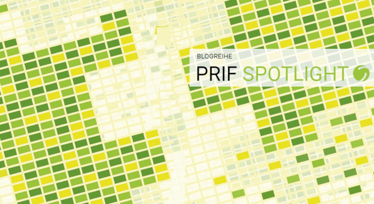 PRIF Spotlight 8/2020 Cover